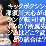 キックボクシングの那須川天心がボクシング転向!所属のジムはどこ?武尊との試合は?